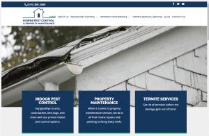 Downs Pest Control & Property Maintenance