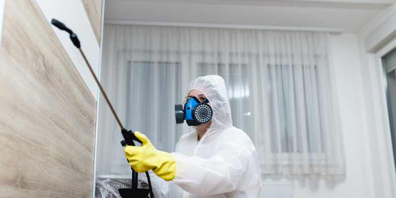 About Downs Pest Control & Property Maintenance in Des Moines, Iowa